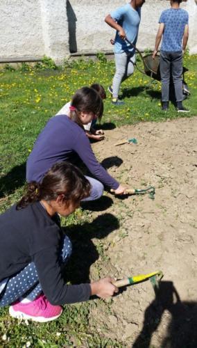 Práce na školním pozemku
