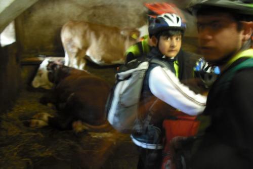 cyklovikend11
